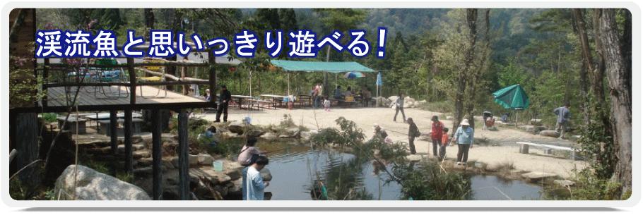 渓流魚と思いっきり遊べる